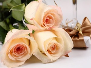 roses-flowers-bouquet-drops-fresh-gift-surprise