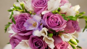 beautiful-flowers-for-you-1080P-wallpaper-middle-size