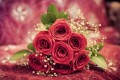 red-rose-flowers-gift-1080P-wallpaper-middle-size