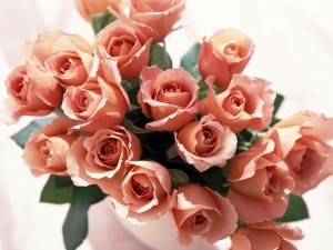 roses-bunch-720P-wallpaper-middle-size
