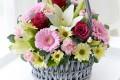 flower_4789